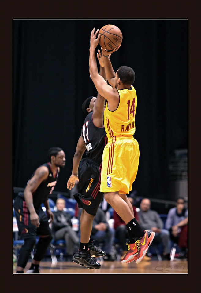 IMAGE: http://gerberphotos.smugmug.com/Sports-Events/Mad-Ants-20132014-/i-R9JspNF/0/X2/5P1B6654-X2.jpg